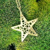 Jessica Hicks Star Necklace in Gold