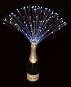 Glowing Fiberoptic Decorations for Bottles at parties, weddings, etc.