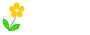 Diva Festival Outfitters